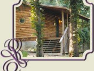 Woodland Violets, Eureka Springs