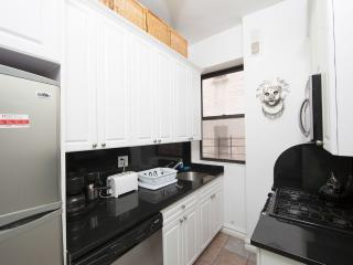 Gorgeous, Newly Renovated, Fully Furnished 2 Bdr, New York