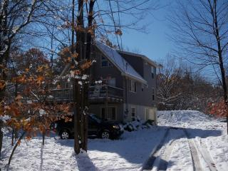 Newer Pocono Mountain Chalet - WIFI