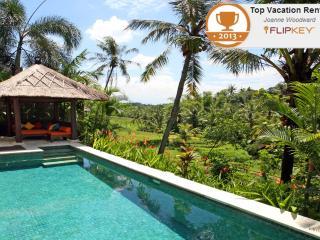 Villa Abadi in the heart of Bali's rice terraces, Canggu