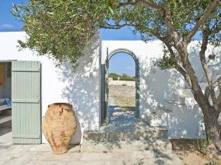 5 bedroom Charatcter Beach Villa in Paros, Antiparos Town