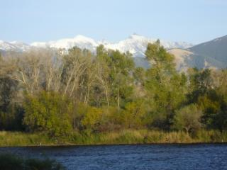 Madison River Home, On the River, Walk to Town