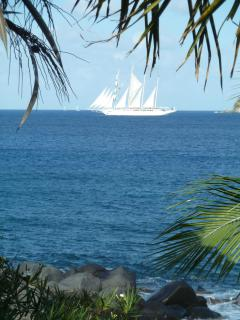 You never know what you'll see from the deck of Sundowner beachfront villa, Virgin Gorda, BVIs.