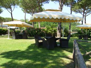 Large Luxury Villa Near Sorrento with Private Pool and Walking Distance to Small