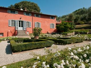 Large Tuscany Villas with a Private Pool and Olive Groves - Villa Schacchi, Lucca