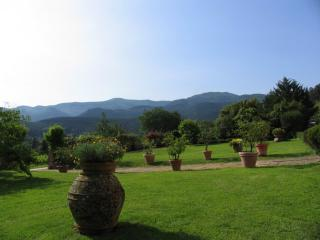 Historic 16th Century Villa in Tuscany with  Private Pool and Shared Tennis Court - Villa Lucchesia, San Pietro a Marcigliano