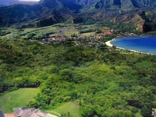 Kauai Luxury home with pool and amazing oceanviews, Princeville