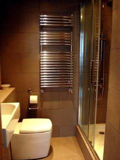 Smart modern shower room