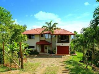 Luxury oceanview Eco-villa, 5 bedrooms with pool, Dominical