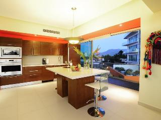 Modern and fully equipped gourmet kitchen