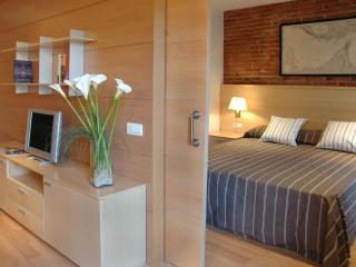 Serennia Eixample 1 bedroom, Barcelona