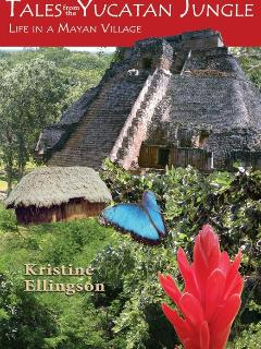 Our book new in 2012 gives you helpful insight into the Mayan region & culture for vacation planning