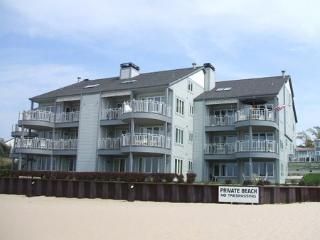 Waters Edge 5 - Condo on The Beach, South Haven