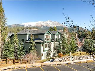 Great Location - Recently Remodeled (13234), Breckenridge