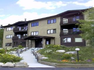 Perfect for a Single Family Vacation - Only 2.5 Blocks to Main Street  (7027), Breckenridge