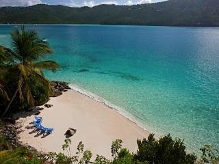 15%-20% off rent from owner: Sand Dollar Estate, St. Thomas