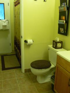View Into Common Bathroom and Shower