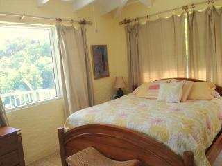 Ocean Garden -  King master bedroom suites, St. John