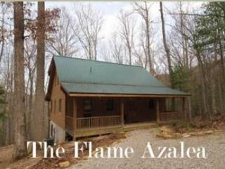 Flame Azalea, Townsend