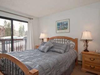 1 Bedroom, 2 Bathroom House in Breckenridge  (10B1)