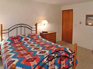 1 Bedroom, 2 Bathroom House in Breckenridge  (11C1)