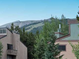 2 Bedroom, 2 Bathroom House in Breckenridge  (13C)
