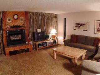 2 Bedroom, 2 Bathroom House in Breckenridge  (06D)
