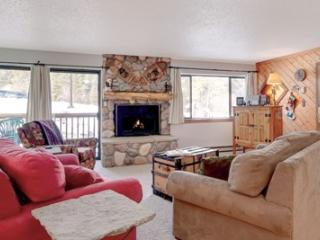 1 Bedroom, 2 Bathroom House in Breckenridge  (03A1)