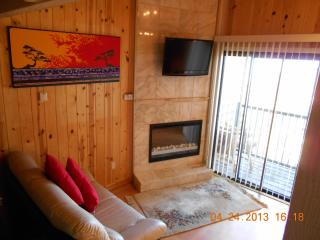 Romantic Ski Shangrila w/ Panoramic View  w/ WIFI
