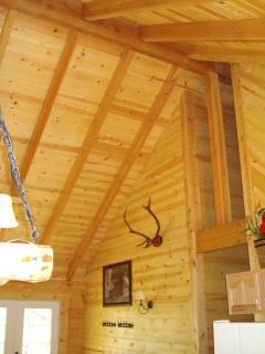 Ponderosa Pine ridge beam.