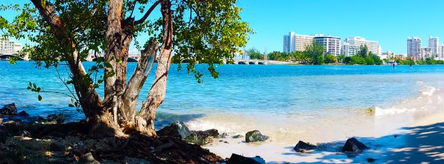 Have a morning walk around the Condado Lagoon for an excellent workout, stop at this corner & njoy..