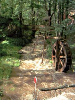 Beautiful Dick's Creek - Bold Mountain Creek