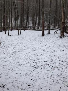 Thanksgiving Snowfall