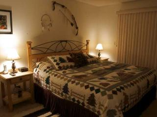 1 Bedroom, 2 Bathroom House in Breckenridge  (01D1)