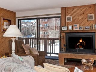 1 Bedroom, 2 Bathroom House in Breckenridge  (02C1)