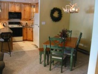 2 Bedroom, 2 Bathroom House in Breckenridge  (01D)