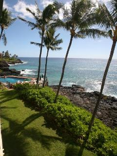 Tropical splendor from your lanai.  Crashing waves, turtles, beautiful sunrises and sunsets.  Wow!