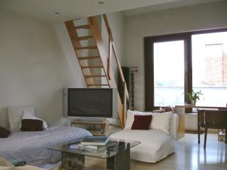 Beautiful loft apt in period house near EU quarter, Brussels
