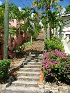 THE 99 STEPS ~ DOWNTOWN CHARLOTTE AMALIE