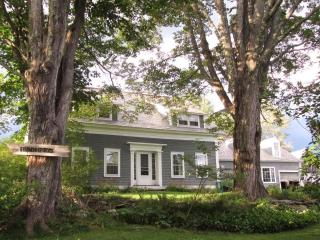 Charming Vt. Farmhouse with spectacular mt. views. Children welcome