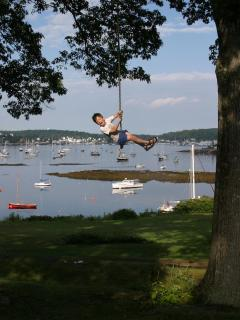 The best rope swing in the State of Maine1