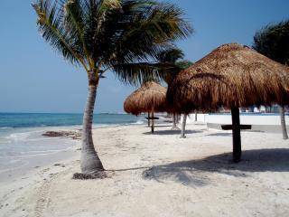 Spectacular Oceanfront Villa on the Mayan Riviera