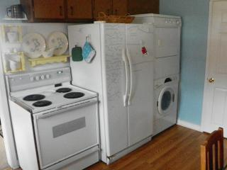 Electric stove, large fridge and washer/dryer combo.