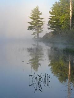 Lakes, ponds & streams just 5 minutes away.