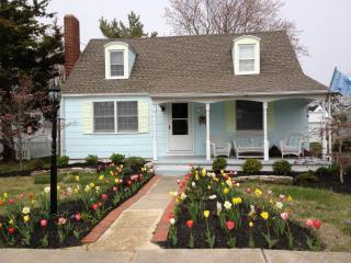 LOOK!! *The Whimsical C'z Beach Cottage **  2 short blocks to the Beach!*