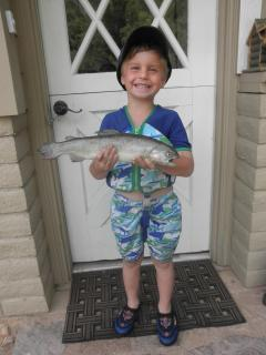 5 year old caught trout