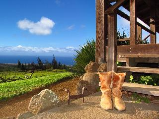 Kohala Lodge - Great private or family retreat..., Hawi