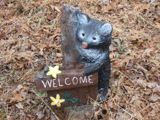 Welcome Guests we love you and you will fall in love with all this cabin has to offer