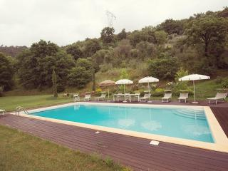 The Valley Farmhouse with private pool near Pisa