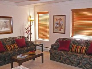 Charming Condo Recently Remodeled - Very Close to Sun Valley Village (1002)
